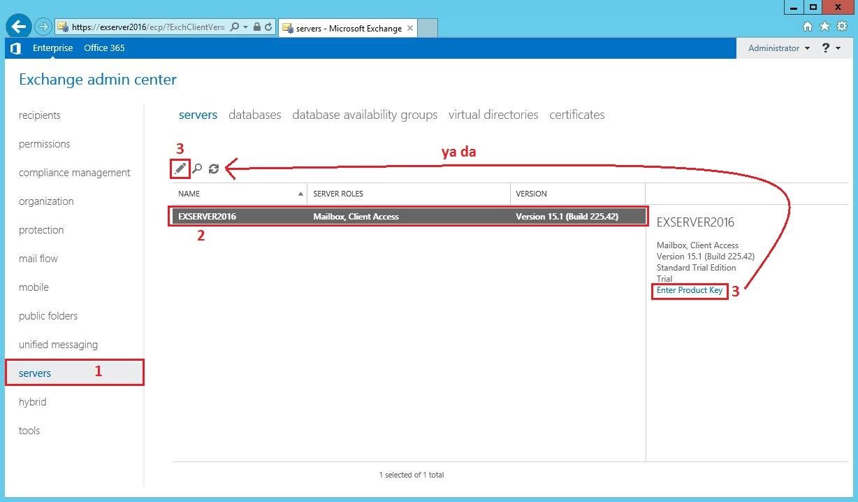 Exchange Server CAL License